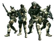 BSAA Force