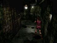 Irons' secret passage (4)