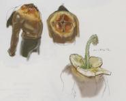 Resident Evil 5 Executioner Majini concept art 2
