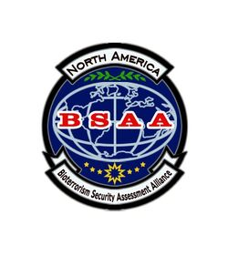 Bsaapatch