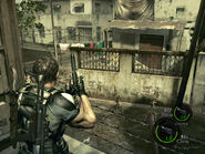 A bridge to far in re5 (18)