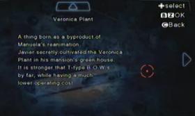 Planta Veronica