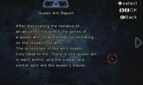 Informe de la hormiga reina