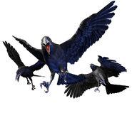 Re0-crow Render
