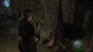 Resident Evil 4 Castle - Old Aqueduct A screenshot 7