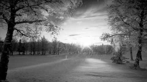 Agalloch - Falling Snow-0