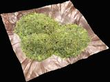 Mixed Herb (G+G+G)