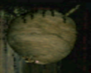 Colmena de avispas