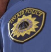 Harvardville Airport Police