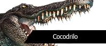 PTCocodrilo