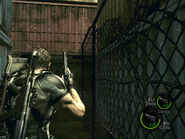 A bridge to far in re5 (17)
