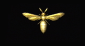 File:Resident Evil 1 Remake Lure Of A Bee 1.jpg