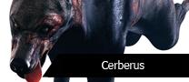 PTCerberus