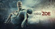 Endofzoe