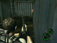 A bridge to far in re5 (11)