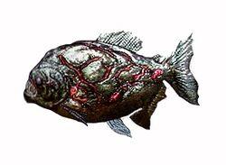 Piranha ene