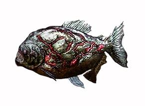 File:Piranha ene.jpg