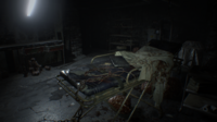 SurgicalArea-GuestHouseB1-RE7