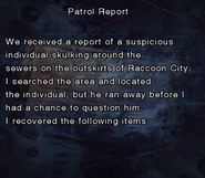RE DC Patrol Report file page2
