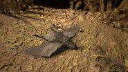 Cuervo muerto RE7