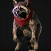 RE2 Remake Accessory Raccoon Icon