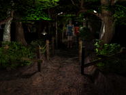 RE3 Woodland Path 1