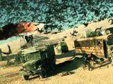 Desert Trail Motel incident