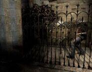 Sombra atacando a Leon