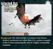 UC p26 bats