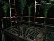Cavernous passage (1)