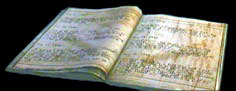 Diario del guarda