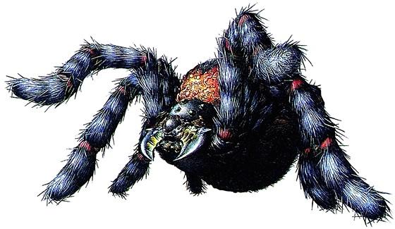 File:RE Black Tiger artwork.jpg