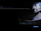 Loading screens (RE6)