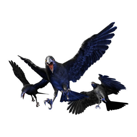 File:Cr crow.png