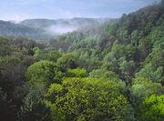 Conkles-HollowHocking-Hills-Ohio
