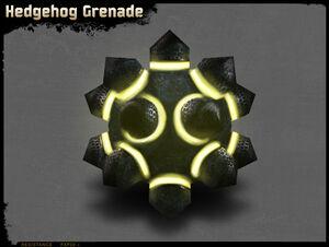 Igelgranate