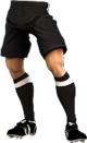 Referee Shorts