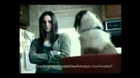 Anti Weed Commercial. Talking Dog