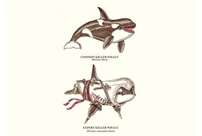 Whaleku-xlarge