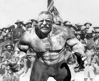 T4Teddy-Roosevelt-Hulk