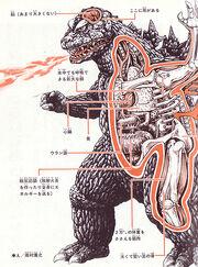 Kaiju04-anatomy