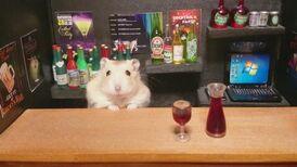 Hamster-Bar-1-750x421