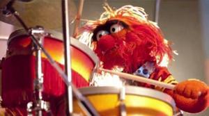 Animal drums 2011