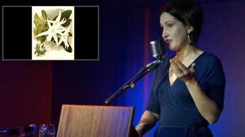 Darwin's Orchids Odd Salon ODDMENTS 2018 (Introduction) 1 8