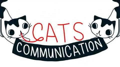 Cats Communication