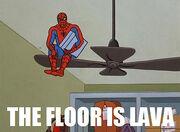 Spider-meme-10