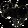 Sombra dragón