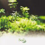 Soil arrange album