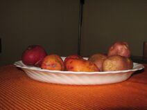 Kartoffeln Landsorte G 1762