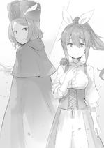 Re Zero Tanpenshuu Volume 5 11
